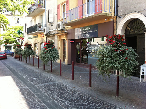 Installation fleurissement à Lyon et en Auvergne-Rhône-Alpes