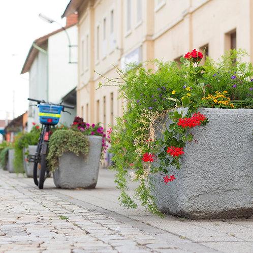 Installation jardinière Green City à Lyon et en Auvergne-Rhône-Alpes
