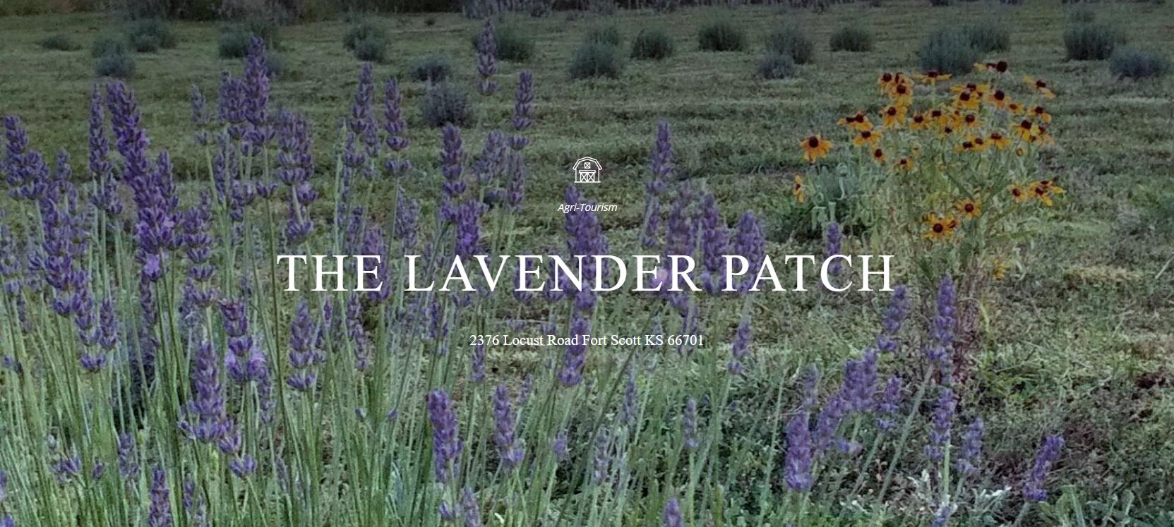 thelavenderpatchfarm
