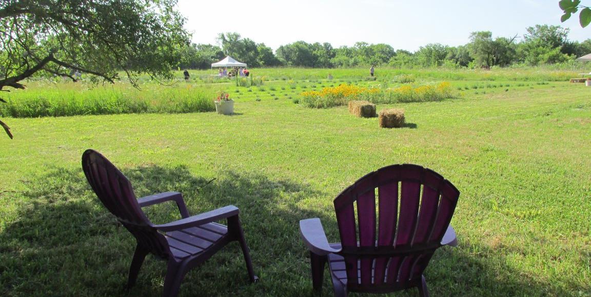 chairs fields.jpg