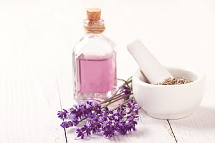 Lavender syrup, free usuage royalty free
