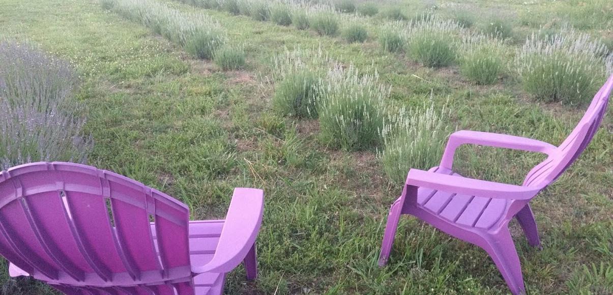 chair next to lav.jpg