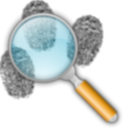 detective-151275_960_720.png