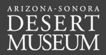 Desert Museum.png