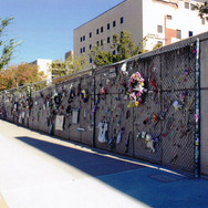 Memorials hung on the wall by the public