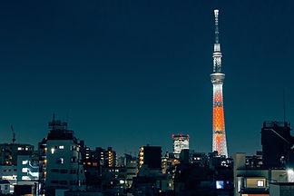 tokyo-2086596_1280.jpg