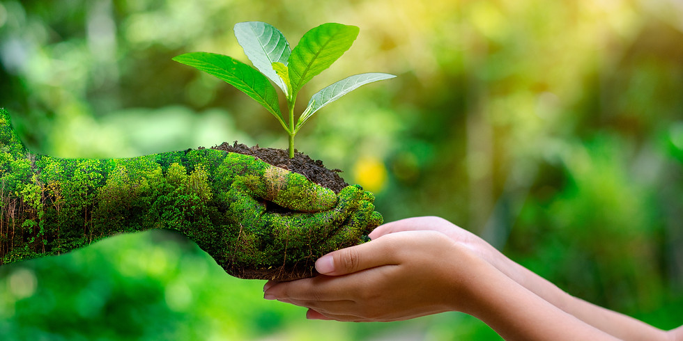 Eco-Solidarity: an Earth Day Meditation