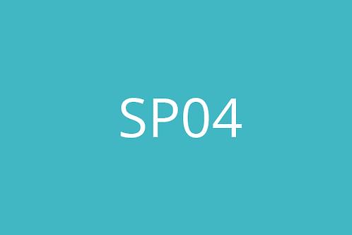 SP04 Design Control System Procedure