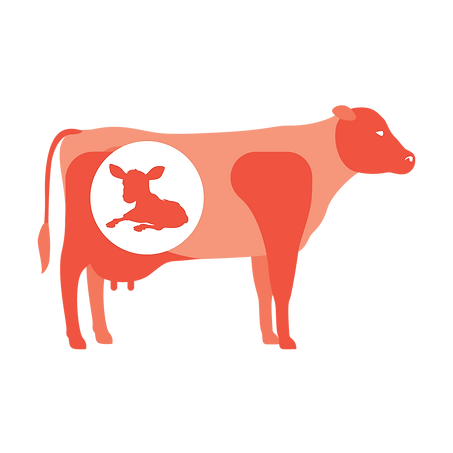 cow_infographic6.png