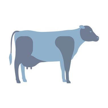 cow_infographic1.png