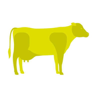 cow_infographic2.png