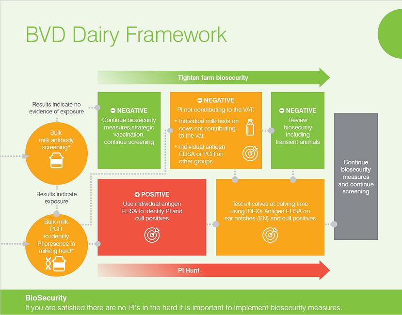BVD framework 2021.png