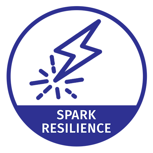SPARK Resilience Training Workshop