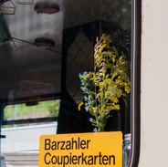 Barzahler