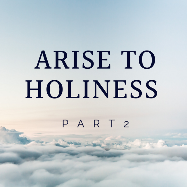 Gallery - Arise to Holiness 2.png