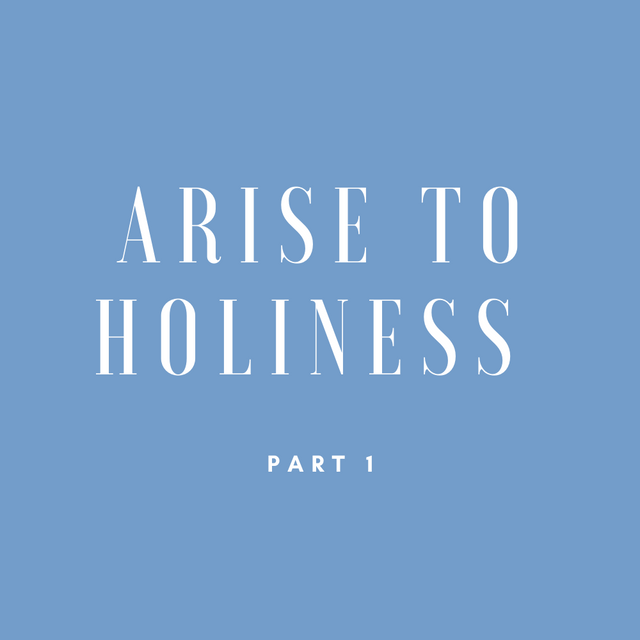 Gallery - Arise to Holiness 1.png