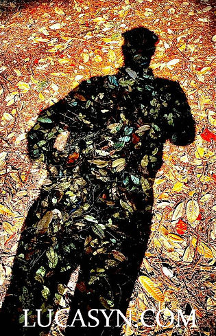 Self-Shadow-Portrait.jpg
