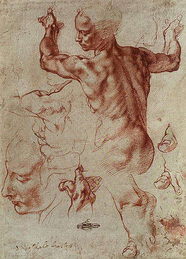 Michelangelo body.jpg