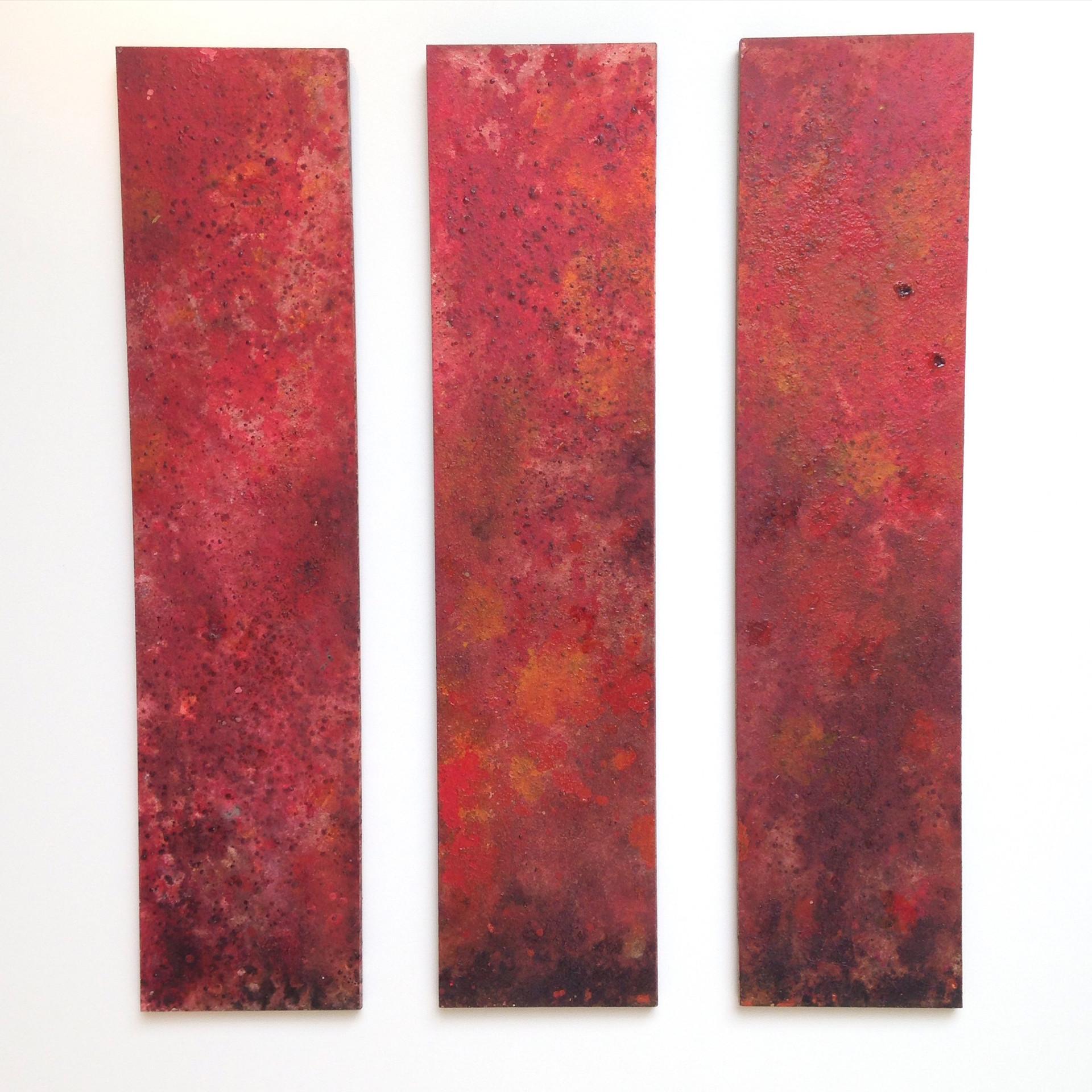 "2013 Wood Panel Series of 6 48"" x 12"" x 1"" each  Cambridge, Massachusetts 2013  Available $700"