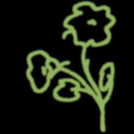 fleur1.png