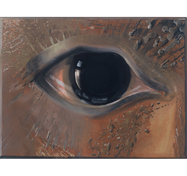 pupil dilation, 2001