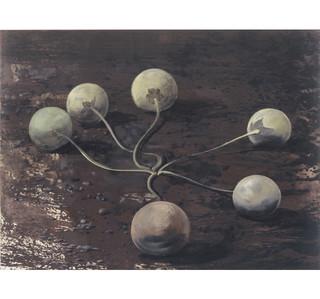 15alruin-vruchten.jpg