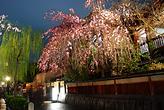 Gion (c)JNTO (c)Y.Shimizu.png
