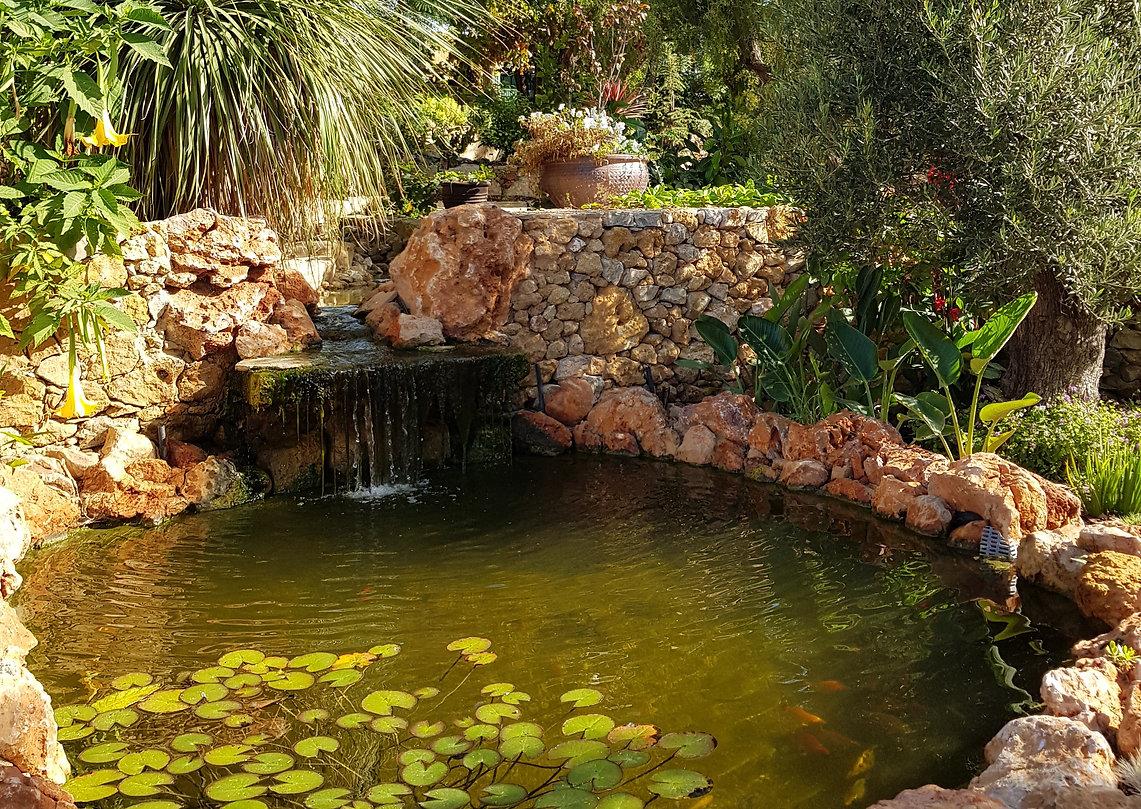 Garden Pool.jpg