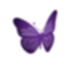 lupus-butterfly.png