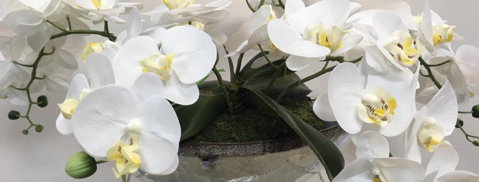 Nearly Natural Orchid Plant