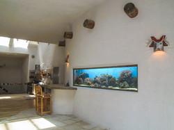 Salt Water Fish tank in living room