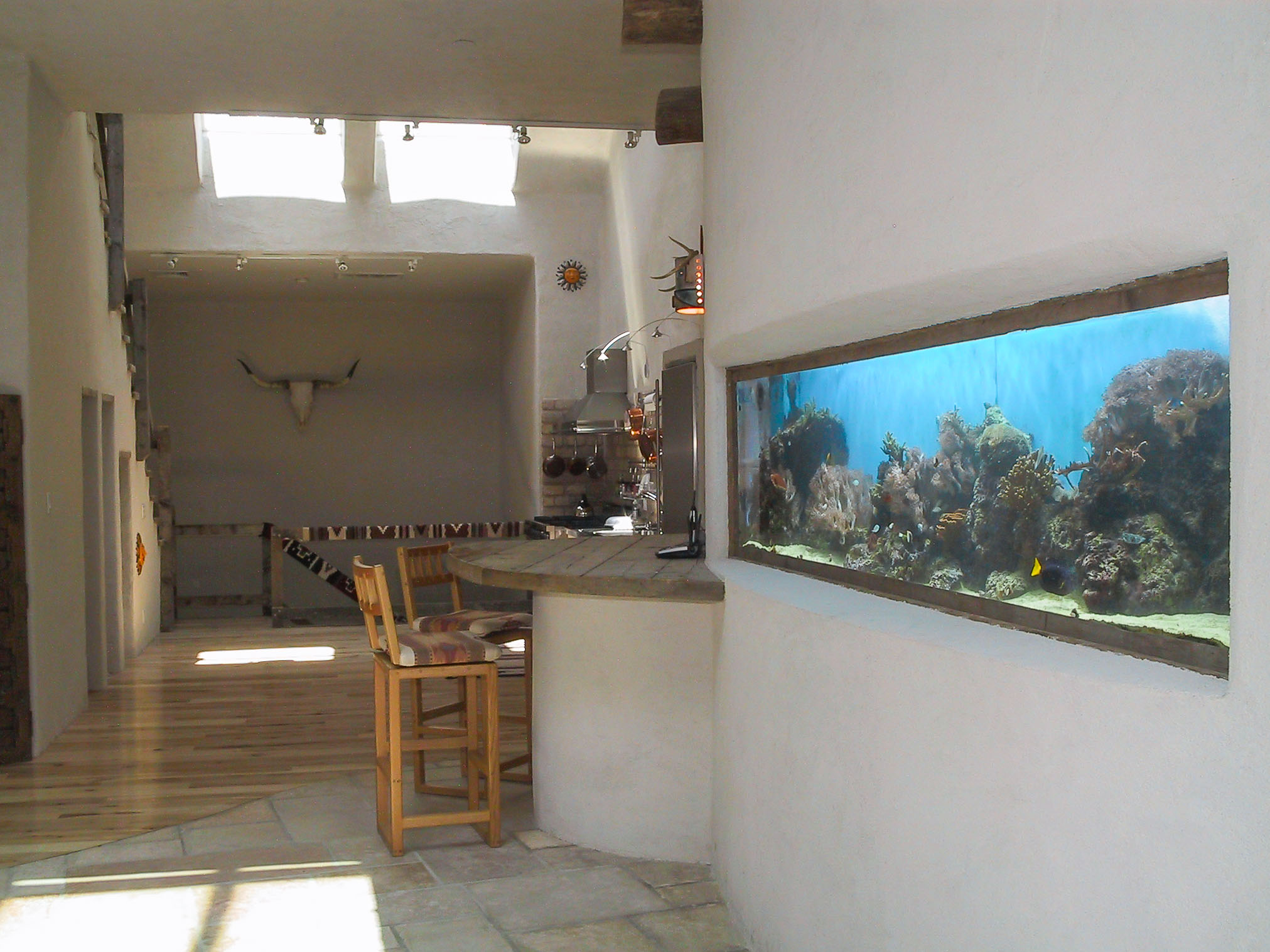 10' fish tank in adobe curved wall