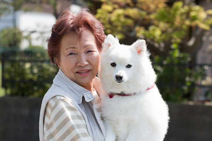 Pet Porter Pals Personal Pet Visits for Seniors