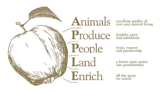 Durham-Farm-Apple-approach.jpg