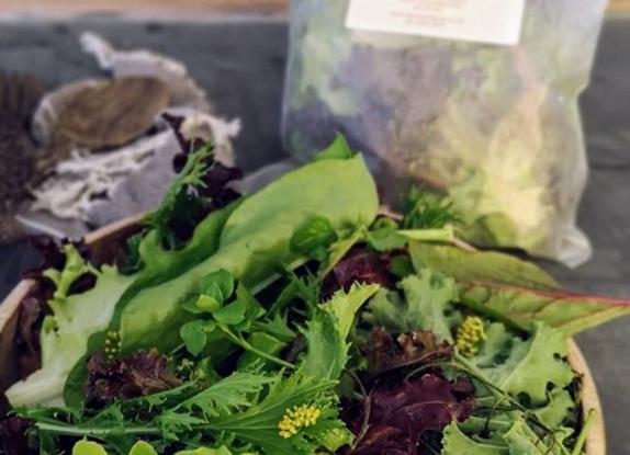 Organic Gourmet Salad Bag 120g