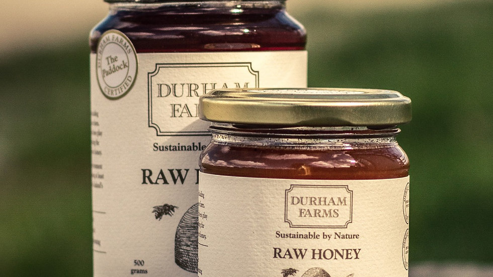 Raw Honey from our Organic Farm