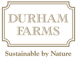 Logo_DurhamTransparent_A4Size.png