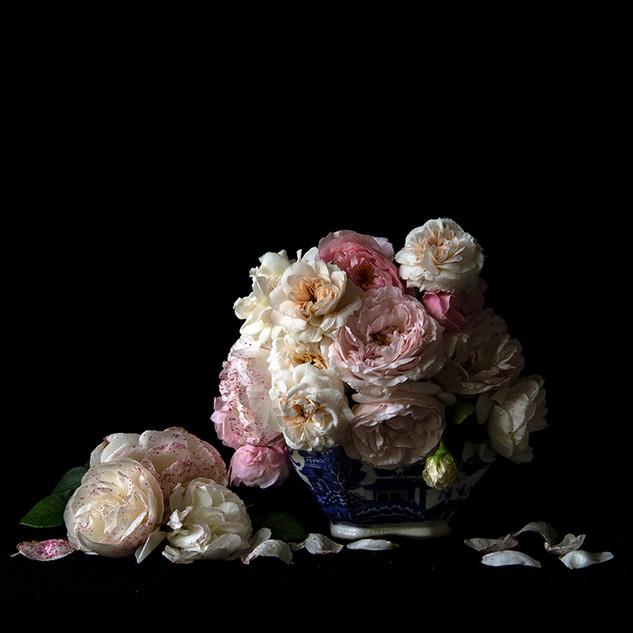Vanitas with Roses_9997.jpg