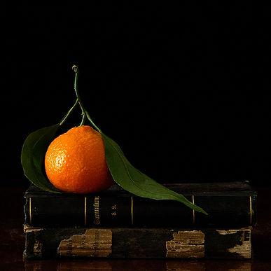 Vanitas with Orange_291.jpg