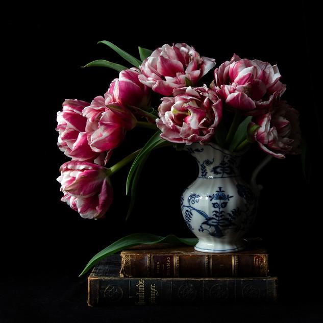Vanitas with Double Tulips 6379