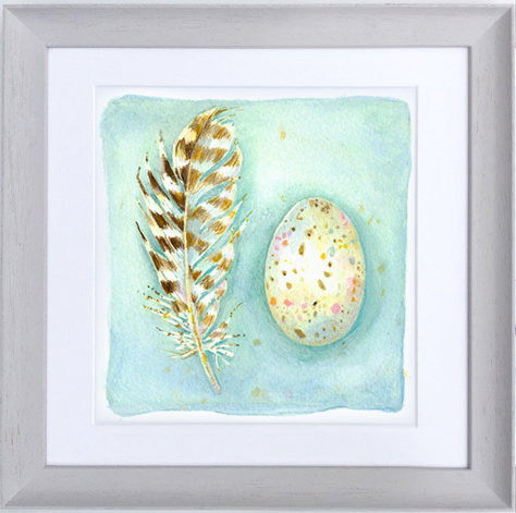 Seagull Egg and Feather