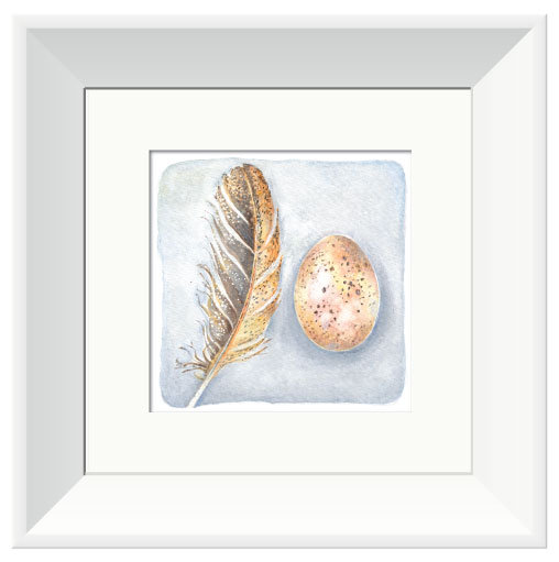 Hens Egg & Feather