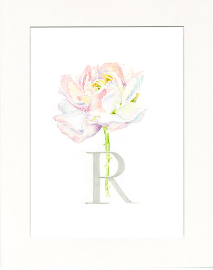R - Rose