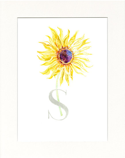S - Sunflower