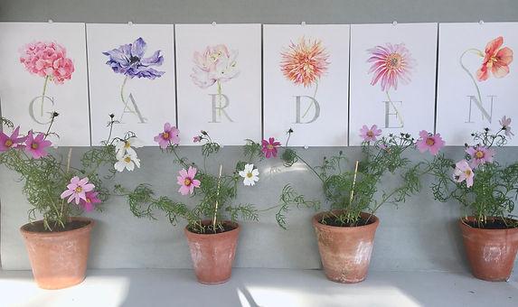 Garden alphabet jpg.jpg