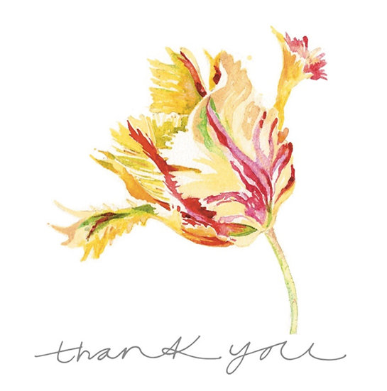 Tulip Greetings Cards