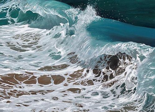 OCEAN DANCE: Ref C10 - Pack of 5, inc. UK postage