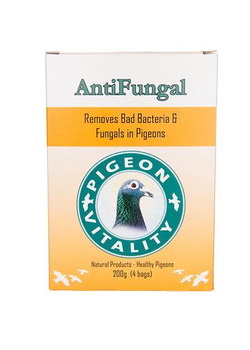 Anti Fungal
