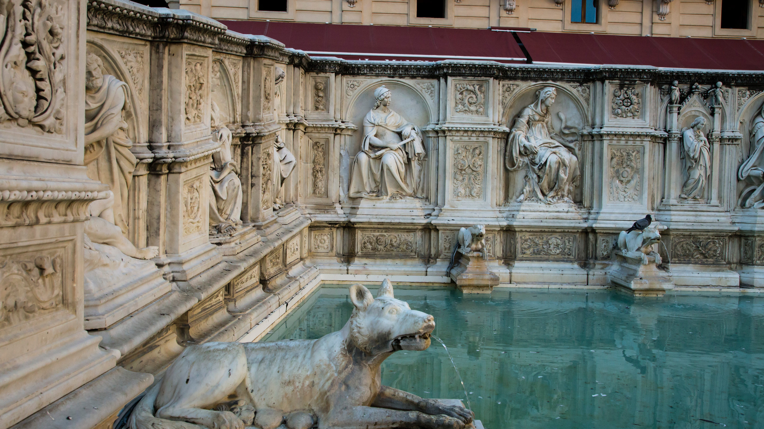 Siena 1 Primavera Dreams