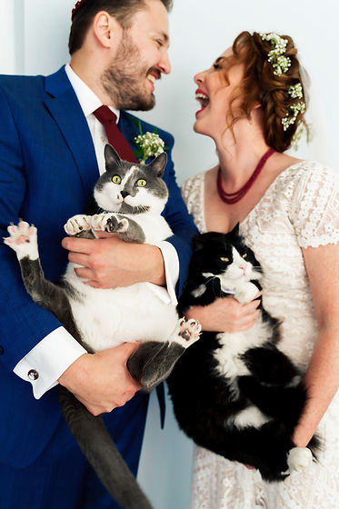 Lusha&Sasha_Wedding-Cats.jpg
